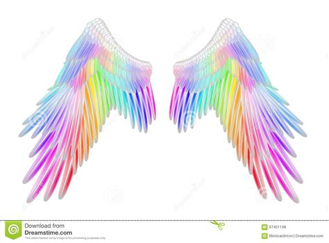 colored wings rainbow wings www pixshark images galleries