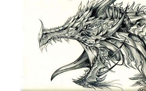 black and white drawing wallpaper drawing full hd wallpaper and background image 1920x1200