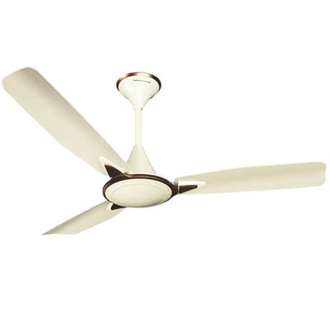 Ceiling Fan Crompton by Buy Crompton Amour 48 Quot Pearl Ceiling Fan At Best Price In
