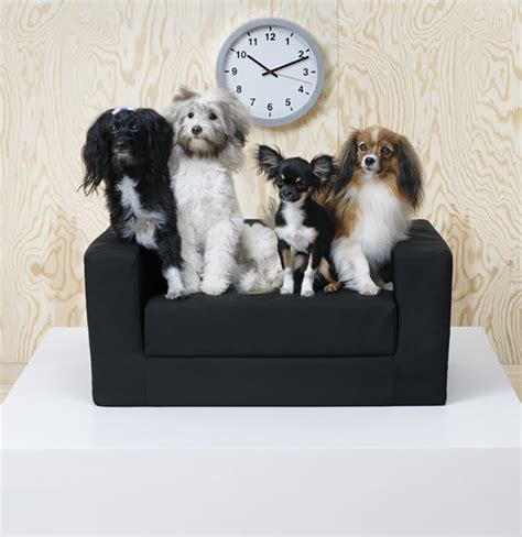 ikea dogs ikea introduces lurvig a collection of furniture and accessories for pets