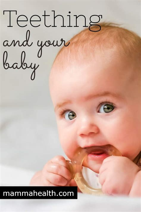 baby teething teething and your baby symptoms and remedies mamma health