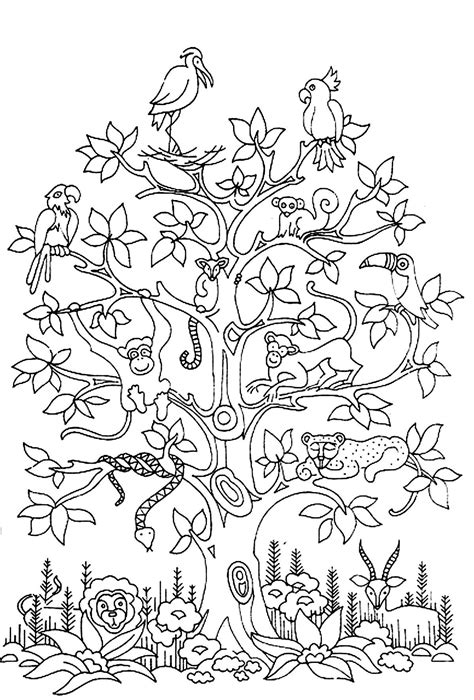 coloring page coloring adult difficult tress birds