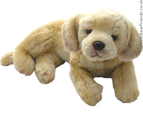 what is a teddy puppy labrador teddy hermann teddy friends