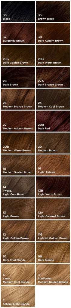 shades of brown hair color chart amazon com clairol natural instincts hair color 35