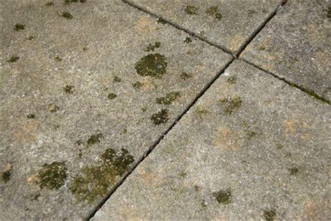 Betonplatten Streichen Terrasse by Pflasterfarbe Darauf Sollten Sie Achten