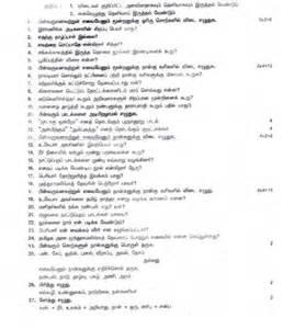 Cheerleading Essay by Classification Essay Cheerleading Writefiction581 Web Fc2