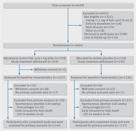 effect  high dose folic acid supplementation
