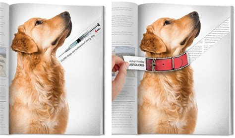 new colors for 2017 ad save a dog s life magazine tear ad aspca the big ad