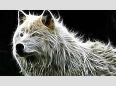 Nice Animals Fractal | all about photo Fire Wolf Wallpaper