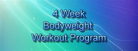 weight workout plans most popular workout programs
