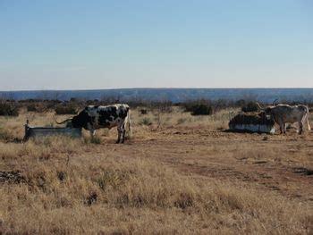 great plains wikitravel texas regions thinglink