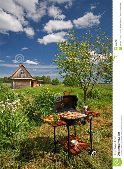 picnic barbecue in a garden royalty free stock photography