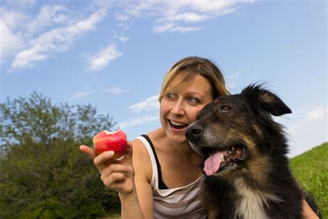 can dogs eat applesauce can dogs eat apples the health benefits of feeding fruit to your pets fetch pet care