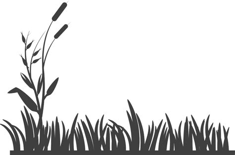 Tanaman Cattail Bulrush free vector graphic flowers grass silhouette garden free image on pixabay 295321