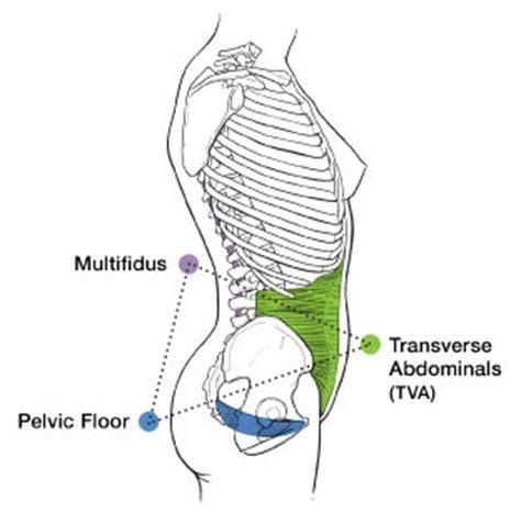 Pelvic Floor Infection by Pelvic Expert