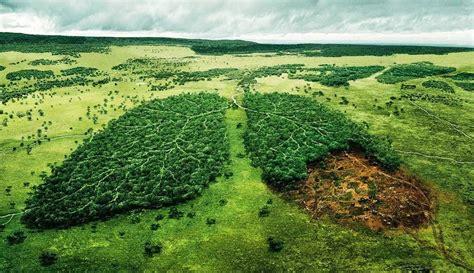 simak 4 tindakan nyata untuk menjaga kesehatan dan lingkungan gambar bencana alam