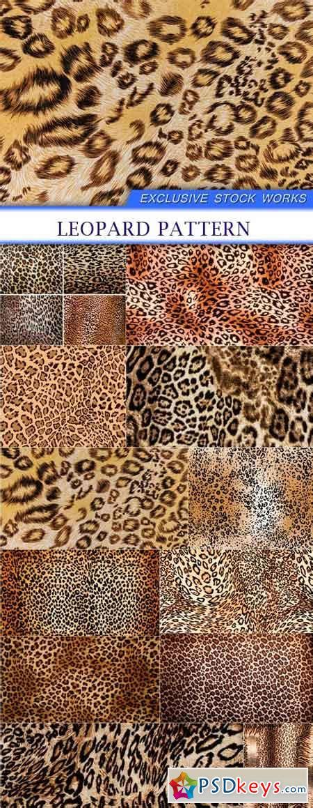 pattern photoshop leopard leopard pattern 12x jpeg 187 free download photoshop vector