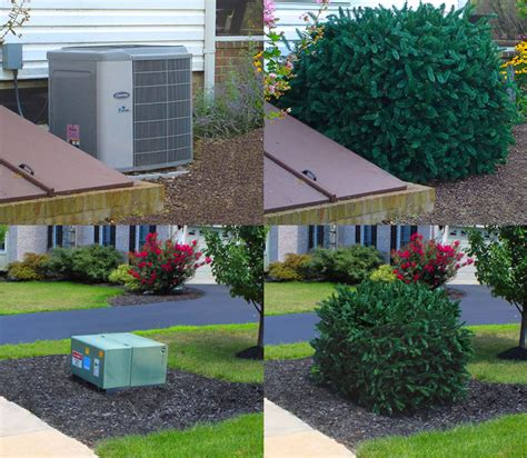 Landscape Ideas To Hide Electrical Box Landscaping Landscaping Ideas To Cover Utility Boxes