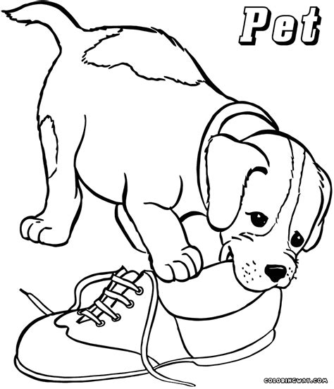 dog treat coloring page dog eating coloring pages related keywords dog eating