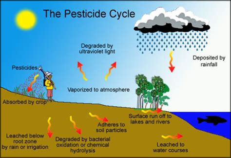 Alternative and Biological Pest Controls   Commons
