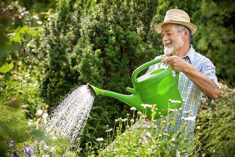 offerta lavoro giardiniere giardiniere giardinaggio come scegliere il giardiniere