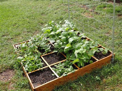 Small Square Foot Backyard Vegetable Garden House Design