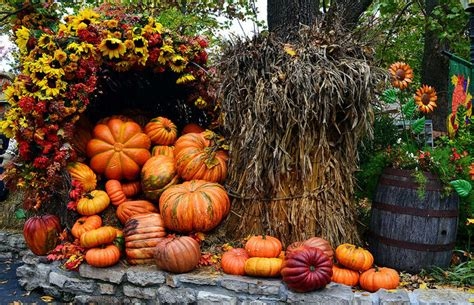 pics of decorations fall outdoor decorations pictures photos and images for