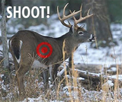 where to shoot a deer diagram where to shoot a deer