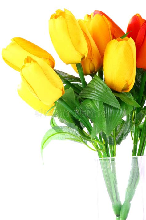stock fiori artificiali fiori artificiali tulipano fotografia stock immagine