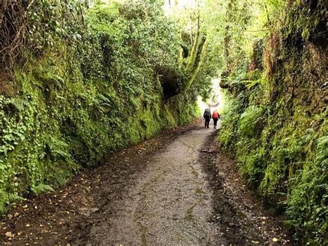 camino de satiago camino de santiago day 30 santiago de compostela spain