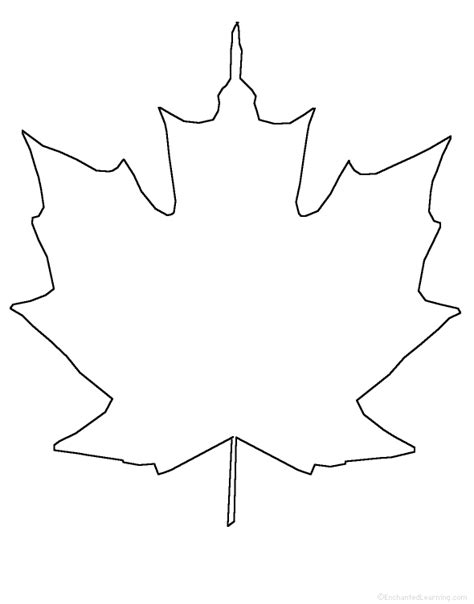 printable traceable leaves maple leaf pattern clipart best