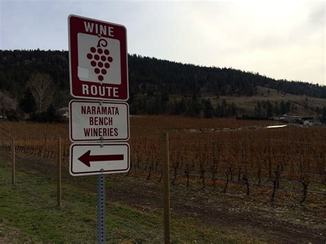 naramata bench wine tours additional flights from calgary could improve penticton s