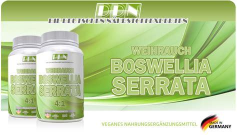 Suplemen Fitnes Glucosamine Chondroitin N Msm 90 S indischer weihrauch boswellias 228 ure 80 150 kapseln