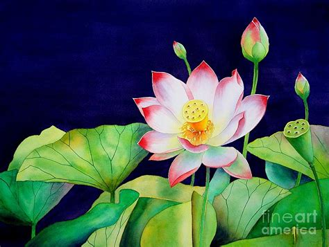 sacred lotus painting by robert hooper