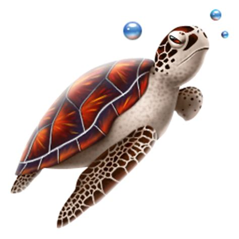icones tortue images tortue png  ico
