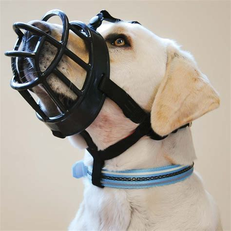 basket muzzle baskerville ultra muzzle comfortable basket muzzle from only 16 59