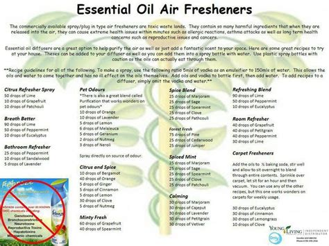 living room air fresheners essential air freshener recipes for the home home search and image search