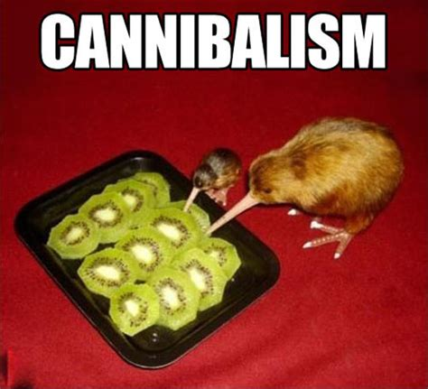 Cannibal Meme - when kiwis eat kiwi