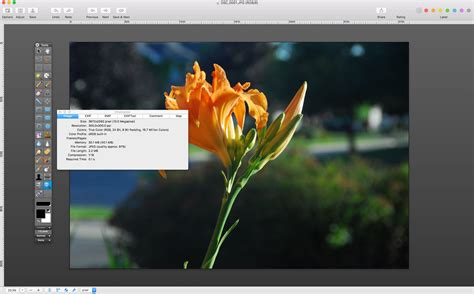 best web design editor mac the best free photo editing software for mac