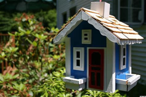 fancy house designs fancy bird houses plans birdcage design ideas