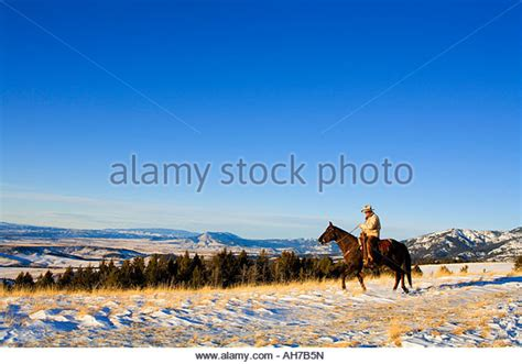 Ah Hoy Ride A Pony Theitlistscom 2 by Cowboy Snow Stock Photos Cowboy Snow Stock Images Alamy