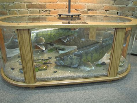 Fish Coffee Table by Coffee Table Fish Mount Dan S Wildlife Creations