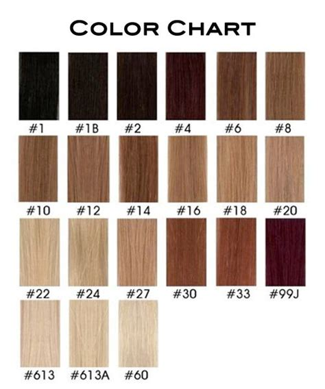 wig color chart human hair wig hair color chart next hair color s hair