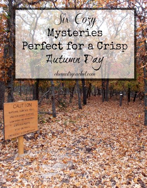 fitness witness chocolate cozy mystery books six cozy mysteries for fall