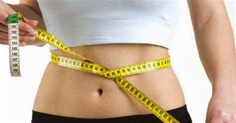 Wmp Weight Management Program komposisi wmp weight management program gudang hwi