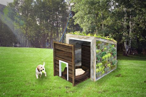 the perfect house dog poss architecture planning and interior design team designs dog house it could be