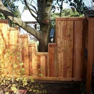 Fences Backyard Building A Fence Around Trees Google Search People Who