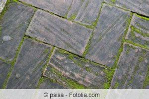 algen auf terrassenplatten terrassenplatten reinigen moos und algen terrasse
