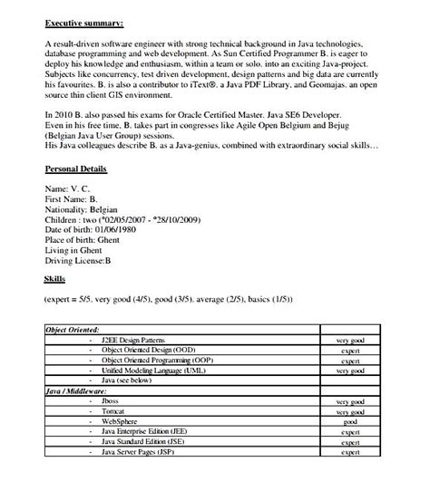 resume template computer programmer free sles