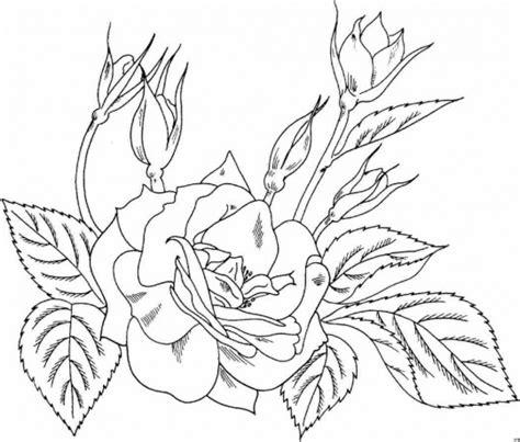 imagenes de rosas para dibujar free rosas bonitas coloring pages